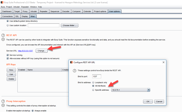 How to integrate Burp Suite for security automation in